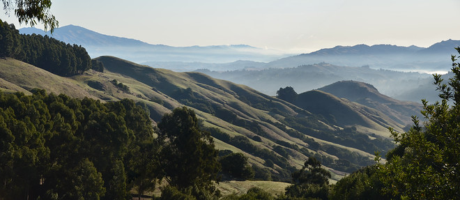 A lovely view, looking east from Grizzly Peak Road in Berkeley, toward the Orinda and Lafayette Valleys, with Mt. Diablo in the distance.  There is no single vantage point from which one can actually enjoy this unobstructed view.  Instead, this is a composite of two images taken from positions separated by a few meters.  It works because the composite image contains no common elements in the near field for which parallax differences would be obvious.  I wish I could claim that I planned this, but the idea came only after I saw the two original inages and realized they could be stitched.Note that this image was stitched using an older version of Photoshop Elements; it contains visible misalignments.